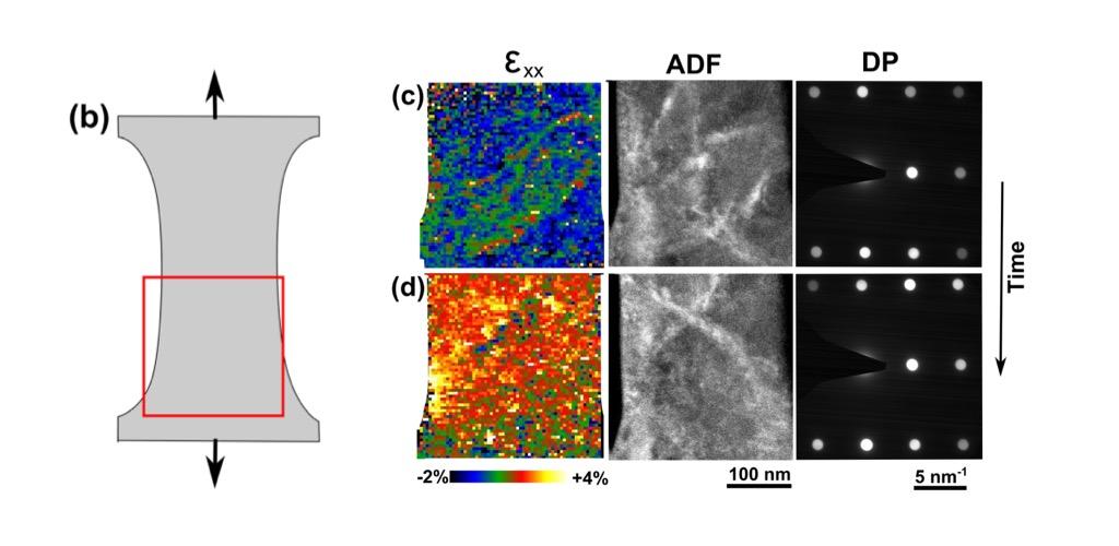 In-situ 4D-STEM strain mapping